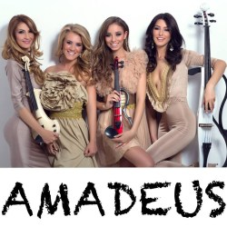 Contact Impresar Amadeus