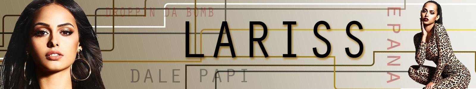 contact-lariss-impresar-pret-concert/